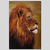 billiga Djurporträttmålningar-Hang målad oljemålning HANDMÅLAD - Djur Klassisk / Moderna Duk / Sträckt kanfas