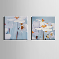 Canvas Set Bloemenmotief/Botanisch Modern,Twee panelen Canvas Vierkant Print Art wall Decor For Huisdecoratie