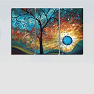 Χαμηλού Κόστους Artist - Tim Xin-Ζωγραφισμένα στο χέρι Αφηρημένο Horizontal Καμβάς Hang-ζωγραφισμένα ελαιογραφία Αρχική Διακόσμηση Τρίπτυχα