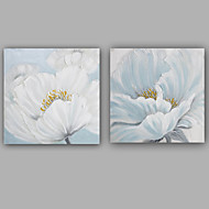 Modern / Classic One Panel Canvas Oil Painting For Home Decoration