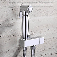 cheap Shower Heads-Contemporary  with  Chrome Single Handle One Hole - Wall Mount Pull out