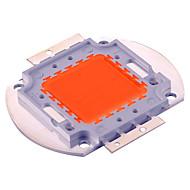 Festoon LED Grow Lights 100 Integrate LED 5000 lm Purple K Decorative DC30-36 V