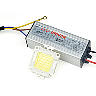 ultralyse LED lampe chip cob50w 110v 220v inngangs smart ic driveren passer for diy ført søkelys flomlys varm / kald hvit (1 stk)