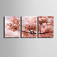 Kukkakuvio/Kasvitiede Moderni European Style,3 paneeli Kanvas Pystysuora Tulosta Art Wall Decor For Kodinsisustus
