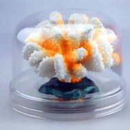 アクアリウムの装飾 ミニ水槽 飾り 無毒&無味 人工 光る キュート 樹脂
