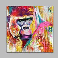 Kézzel festett Állat Modern/kortárs Egy elem Vászon Hang festett olajfestmény For lakberendezési