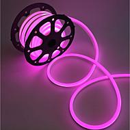 LEDストリップネオンライト2m防水屋外ip68 120leds / m暖かい白/白/赤/黄euプラグ(ac220v - 240v)
