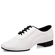 cheap Modern Shoes-Men's Latin Shoes Nappa Leather Heel Low Heel Dance Shoes White / Indoor