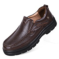 Men's Loafers & Slip-Ons Driving Shoes Formal Shoes Comfort Fall Winter Real Leather Cowhide Nappa Leather Casual Outdoor Office & Career