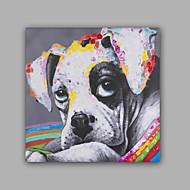 מצויר ביד בעלי חיים רשמי סגנון אומנותי אומנותי סגנון קלאסי פנל אחד בד ציור שמן צבוע-Hang For קישוט הבית