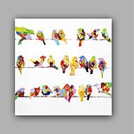 Kézzel festett Állat Előírásos Művészeti stílus Művészi Klasszikus stílus Egy elem Vászon Hang festett olajfestmény For lakberendezési