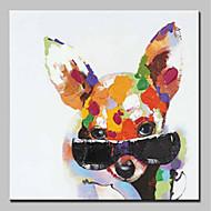 Χαμηλού Κόστους most popular-mintura® ζωγραφισμένα στο χέρι ζώα σκύλου ζωγραφική πετρελαίου σε καμβά σύγχρονη αφηρημένη εικόνα τέχνης τοίχου για διακόσμηση σπιτιού έτοιμη να κρεμάσει