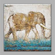 billiga Djurporträttmålningar-Hang målad oljemålning HANDMÅLAD - Abstrakt / Djur Moderna Utan innerram / Valsad duk