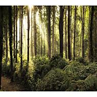tanie Dekoracje ścienne-Motyw Garden Krajobraz Dekoracja ścienna Poliester Współczesny Nowoczesny Wall Art, Ścienne Gobeliny Dekoracja
