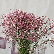 billige Kunstig Blomst-Kunstige blomster 1 Afdeling minimalistisk stil Brudeslør Bordblomst