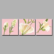 ieftine Imprimeuri-Imprimeu Imprimate în rulouri de pânză / Imprimeuri pânză întinse - Modern / Floral / Botanic Modern