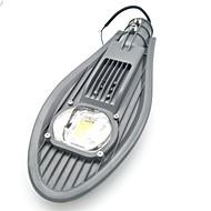 お買い得  Lampu Jalur-1個 30 W LEDフラッドライト / LED街路灯 新デザイン / 防水 / 装飾用 温白色 / クールホワイト 85-265 V 屋外照明 / 中庭 / ガーデン
