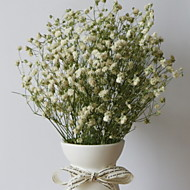 billige Kunstig Blomst-Kunstige blomster 1 Afdeling Klassisk Moderne / Nutidig / minimalistisk stil Evige blomster Bordblomst