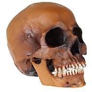 baratos -Decorações de férias Decorações de Halloween Halloween Entertaining / Objetos de decoração Decorativa / Legal Café 1pç