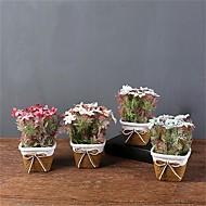 billige Kunstige blomster-Kunstige blomster 1 Gren Klassisk / Singel Enkel Stil / Moderne Kystantemum / Vase Bordblomst