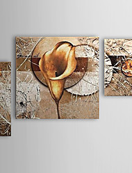 Hand-Painted Floral/Botanical Any Shape,Modern Three Panels Oil Painting For Home Decoration