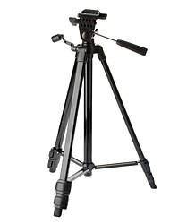 cheap -Victory 2016-BK 3-Section Camera Light Weight Tripod (Black)