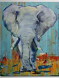 iarts®hand pintura a óleo pintado animais elefante com moldura esticada