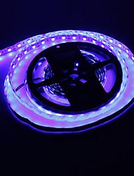 cheap -Z®ZDM 5M 72W 300x5050SMD Blue Light LED Strip Lamp (DC 12V)