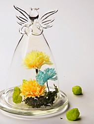 cheap -Table Centerpieces DIY Terrarium/ Angel Glass Cover   Table Deocrations (Plants Not Included)