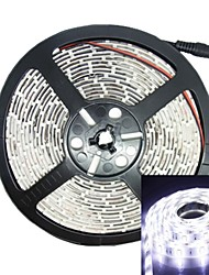 abordables -500cm 75w 300x5050 SMD LED 3000-3600lm 6000-6500K DC12V IP68 étanche bande de lumière blanche