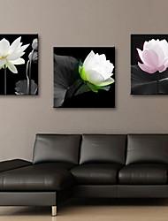 Reproduction transférée sur toile Art floral élégant Lotus Set de 3