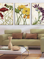 cheap -Stretched Canvas Print Canvas Set Botanical Three Panels Horizontal Print Wall Decor Home Decoration