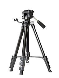 cheap -Wen Fan FP-800 Portable Tripod for SLR/DV