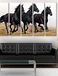 cheap -Stretched Canvas Print Animals Five Panels Vertical Print Wall Decor Home Decoration