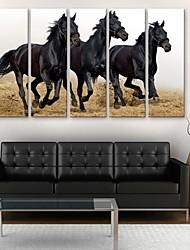 e-Home® tela sei un cavallo in corsa insieme pittura decorativa di 5