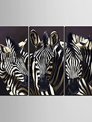 Animal Classic Traditional,Three Panels Vertical Print Wall Decor For Home Decoration