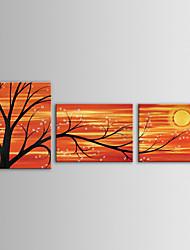 economico -iarts pittura a olio moderna di paesaggio di alberi in fiore rami di fiori set di 3 tele dipinte a mano con telaio allungato
