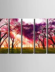 abordables -e-HOME lona envuelta arte del bosque determinado de la pintura decorativa de 5