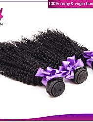 billige -3 Bundler malaysisk hår Krøllet / Klassisk / Kinky Curly Jomfruhår Menneskehår, Bølget Menneskehår Vævninger Menneskehår Extensions / Kinky Krøller