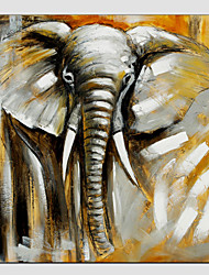 baratos -Pintura a Óleo Pintados à mão - Animais Estilo Europeu Modern Tela de pintura