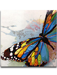 cheap -IARTS®Beautiful Colorfl Knife Butterfly Animal Oil Painting Stretched Designs Whosale Price in the end of 2015