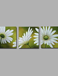 cheap -Oil Painting Hand Painted - Floral / Botanical Modern Canvas Three Panels