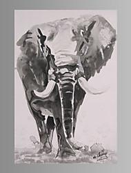 Impressão de lona de arte de parede de elefante pronto para pendurar
