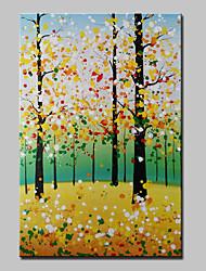 lager dipinto ad olio dipinto a mano d'arte astratta ragazza decorazione dipinti murali arte per soggiorno casa casa cornice bianca