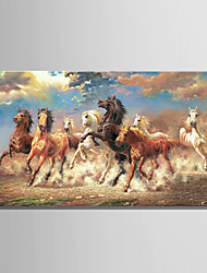 cheap -Large Size 8 Running Horse Animal Oil painting on Canvas 3D Print Picture One Panel Whit frame Ready to Hang
