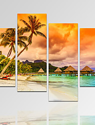 VISUAL STAR®Palm Tree Landscape Picture Print on Canvas with Wood Frame Sea Sunset Canvas Wall Art Ready to Hang