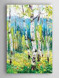 cheap -Hand Painted Oil Painting Landscape Light Green Trees with Stretched Frame 7 Wall Arts®