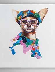 ručně malované olejomalba zvířat módní pes s napnuté rámem