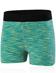 cheap -Women's Running Shorts / Running Tight Shorts - Red, Green, Blue Sports Shorts Yoga, Fitness, Gym Activewear Quick Dry, Breathable