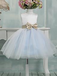 Ball Gown Knee Length Flower Girl Dress - Tulle Sleeveless Jewel Neck by Lovelybees